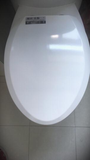 通用ssww浪鲸马桶盖配件 脲醛加厚老式坐便盖坐圈U型V型方形抽水厕所板 脲醛老款V型36宽 晒单图