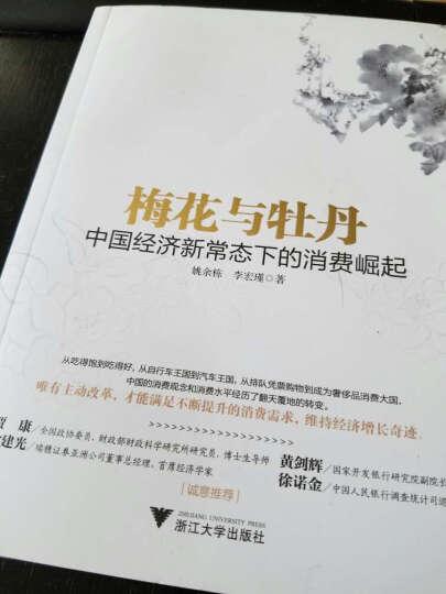 梅花与牡丹:中国经济新常态下的消费崛起 晒单图