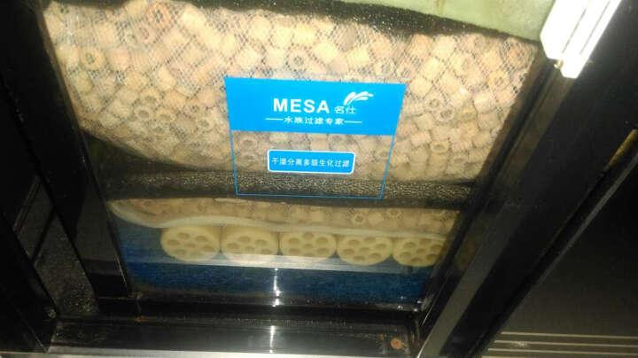 生命之源日本水族箱龙鱼缸过滤材料微酸性陶瓷环降低调低PH值细菌环玻璃环 慈鲷/罗汉鱼专用5L 晒单图