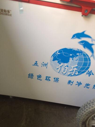 五洲伯乐WUZHOUBOLE 商用大容量冰柜 冷藏冷冻转换柜卧式大冷柜 家用冷藏保鲜柜速冻柜茶叶柜 WR/WF-508 1.52米 508升 晒单图