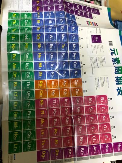 元素周期表挂图 晒单图