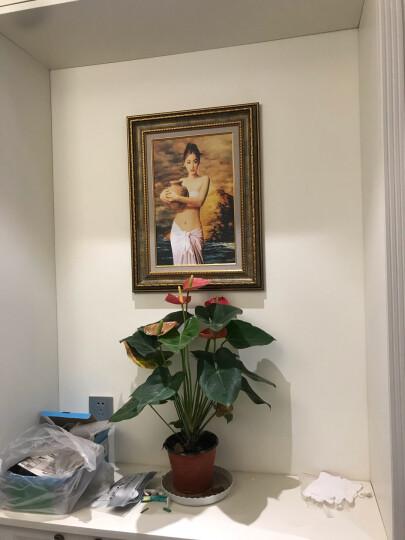 非常家饰 玄关装饰画欧式人物竖版走廊壁画过道挂画墙画 世界名画《陶》H43 45x60cm【世界名画系列】 晒单图