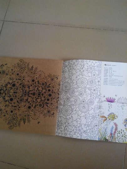秘密花园:一本探索奇境的手绘涂色书(彩铅版) 晒单图