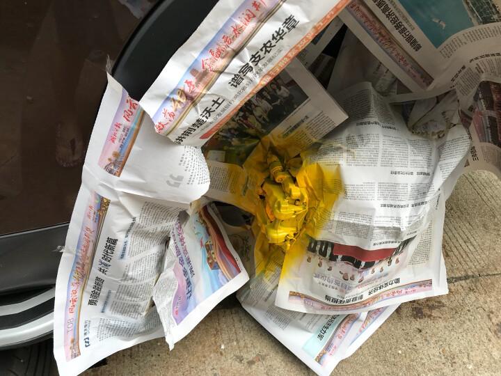 梅氏兄弟汽车刹车卡钳喷漆排气管铝喷剂轮毂钢圈漆耐800度高温荧光漆 柠檬黄+光油+底漆+贴纸 晒单图