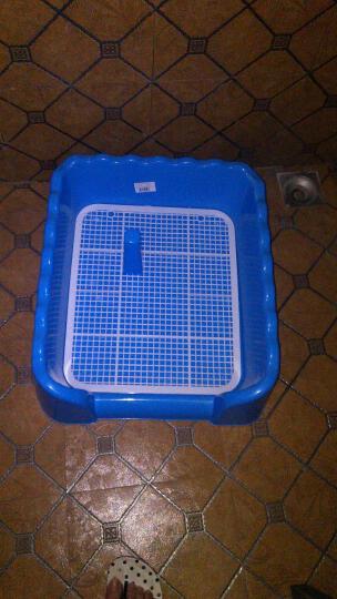 PETCIRCLE 狗狗厕所泰迪比熊小型犬铺垫式便盆塑料可拆洗 买大号送消毒液和尿片 蓝色(大号带立柱) 晒单图