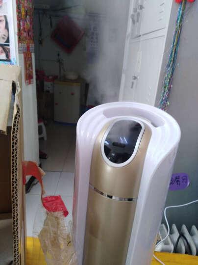 【京东仓直发】落地空气加湿器 家用客厅大容量办公室卧室空调智能孕妇婴儿可用静音 电脑遥控款-香槟金 晒单图