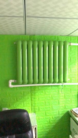 亿润 暖气片艺术家用水暖壁挂式装饰钢制供热卫生间钢二柱安装散热器家用水暖散热片 (升级)大水流双水道570mm高 晒单图