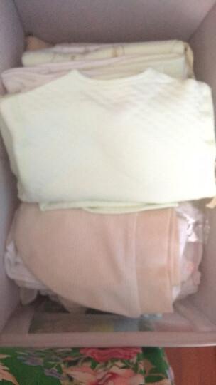拉比(Labi Baby) 婴儿面巾方巾男女童宝宝纱布巾尺寸可选(2条装)动物世界 45x25cm面巾 晒单图