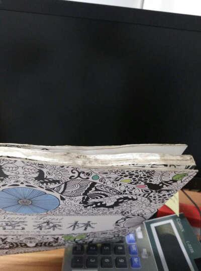 减压手绘涂色书秘密森林正版 少儿成人创意涂鸦填色图书 艺术绘画本 晒单图