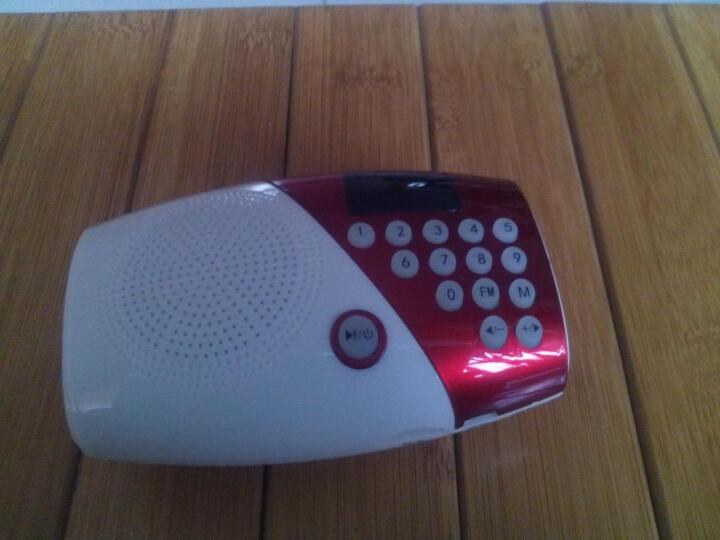 夏新(Amoi) V8 迷你音响便携老人收音机 插卡音箱低音炮户外儿童早教mp3音乐播放器 可乐红 标配不含内存 晒单图