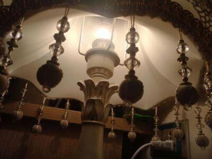 仲马 欧式台灯 LED卧室书房床头  照明灯具婚庆装饰韩式公主田园创意台灯 鎏光金款(送相框+普通灯泡) 调光开关 晒单图