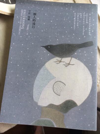 [台版]一個人的遠行/亨利 梭羅/自由之丘出版/ 歐美 世界經典文學 晒单图