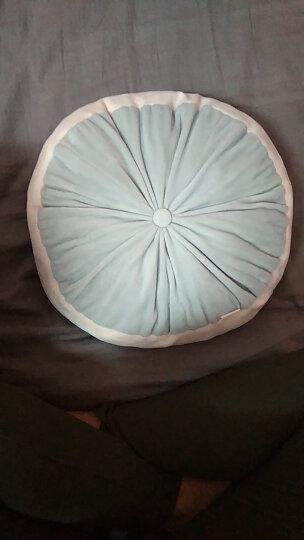LIV HEART 日本羽绒棉抱枕汽车座垫办公室学生电脑椅子坐垫餐椅垫创意送女生生日礼物 蓝色L号 L(直径40*H8) 晒单图