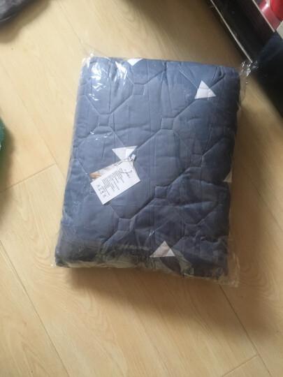 圣茂 秋冬加厚夹棉床裙单品单双人床床罩单件 床上用品 菠萝蜜-蓝 150*200cm 晒单图