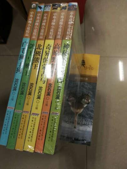 中外动物小说全五辑(套装全二十六册) 晒单图