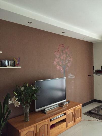 橘子燕 墙贴客厅 卧室电视背景贴沙发贴饰 PVC不干胶贴纸红杉树墙贴画 枫树情 晒单图