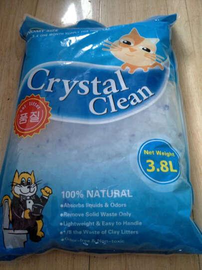 布袋熊-浦力顿猫砂 水晶猫砂3.8L 猫沙 猫砂 猫清洁用品 猫咪清洁沙 3.8L*4包 晒单图