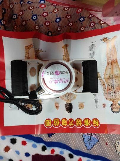 伊姿魔力多功能磁疗保健按摩器振碎脂美容按摩仪经络腹部保养卵巢家用按摩器SH-205 卡其色 晒单图