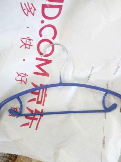 俏天下衣架晾衣架女士内衣架浸塑防滑儿童衣架WL176S蓝色 晒单图
