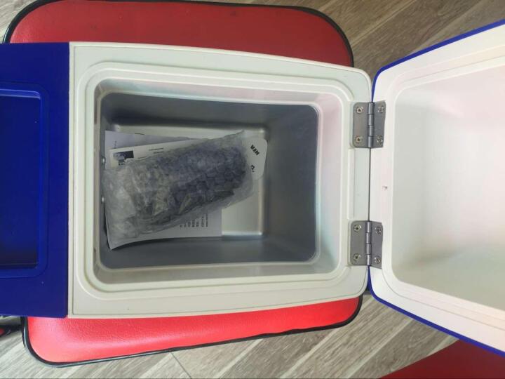 米其林车载迷你冰箱车家两用便携式宿舍冷藏汽车用冷冻智能数显温度压缩机零下18度 8升数显版可制冰(半导体冰箱) 24V货车专用 晒单图