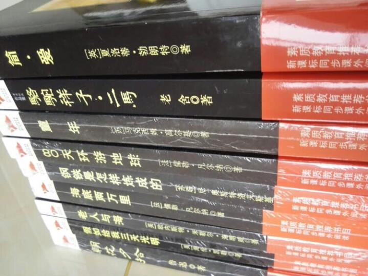 中小学阅读丛书精选:简爱+昆虫记+钢铁是怎样炼成的+老人与海+新月集等(世界文学精选B 套装共7册) 晒单图