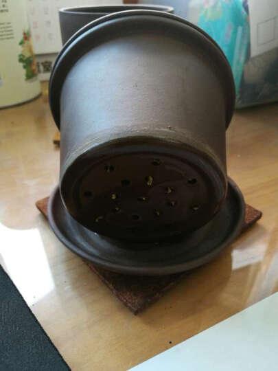 丁山 宜兴紫砂壶 办公泡茶紫砂杯整套茶具套装茶壶茶杯全手工水杯子 B1 清茶 晒单图