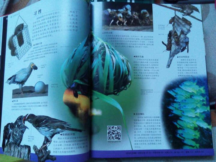 DK动物百科 晒单图