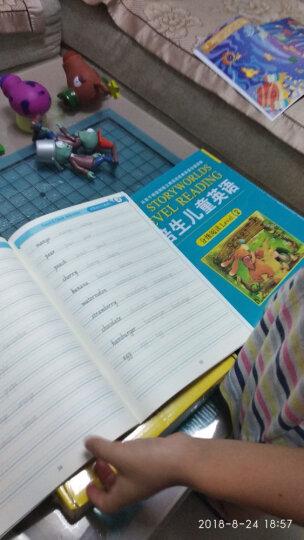 新东方 我的第一本英文字帖 字母篇(意大利斜体) 晒单图