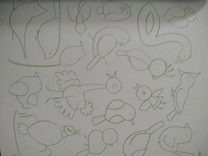 【全套3册】儿童美术图库儿童简笔画大全+儿童画+卡通画 简笔画教程教材 少儿美术绘画本 晒单图