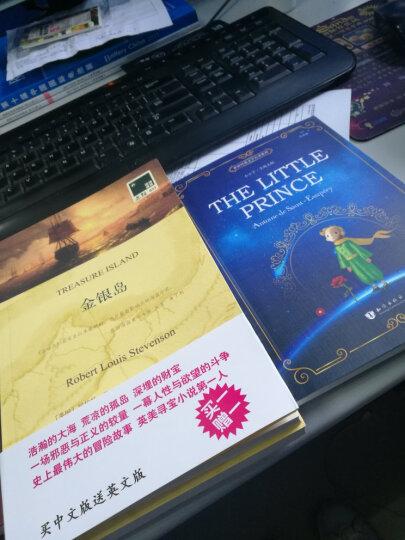 金银岛 史蒂文森原著(英文原版书+中文全译本)中英文对照书籍双语读物译林世界名著英语小说 晒单图