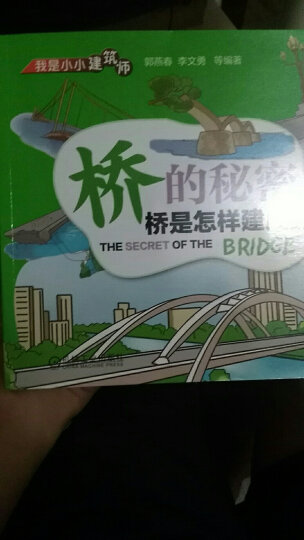 我是小小建筑师·桥的秘密:桥是怎样建成的 晒单图