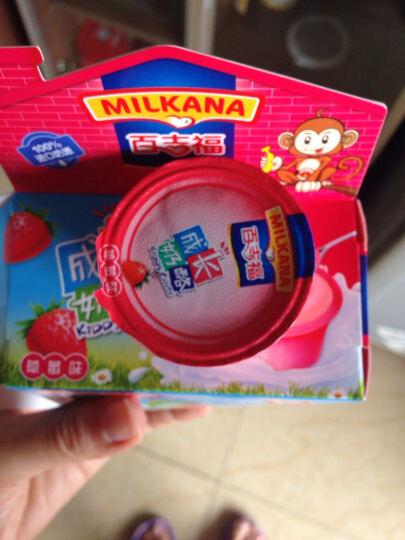 百吉福奶酪儿童成长奶酪草莓口味100g     晒单图
