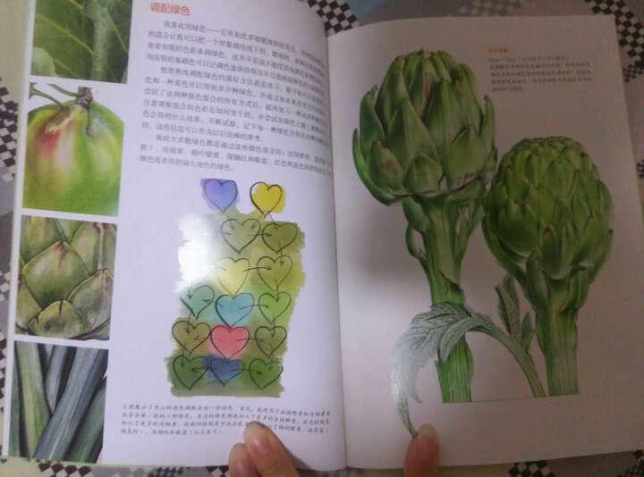 世界绘画经典教程:Billy Showell的水彩蔬果极致表现 晒单图