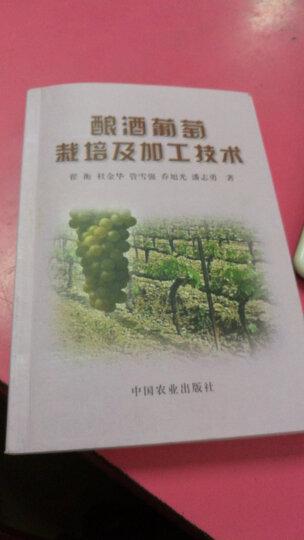 酿酒葡萄栽培及加工技术 晒单图