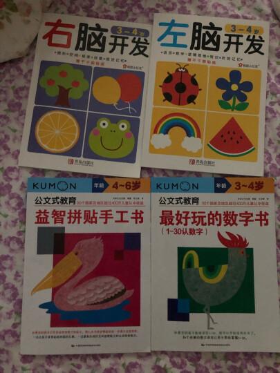 公文式教育:最好玩的绘画书(3-4岁) 晒单图