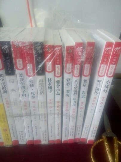中学生必读名家系列(套装共16册) 晒单图