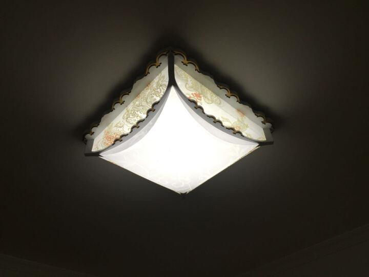 欧式led吸顶灯简约主卧室灯具温馨浪漫田园羊皮灯房间灯现代简欧客厅书房灯饰无极调光吸顶灯 46CM带节能灯管 晒单图