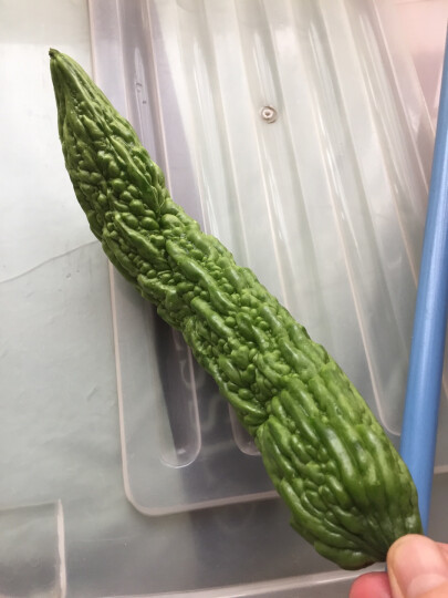 绿源禾心 有机苦瓜 新鲜蔬菜 约500g 晒单图