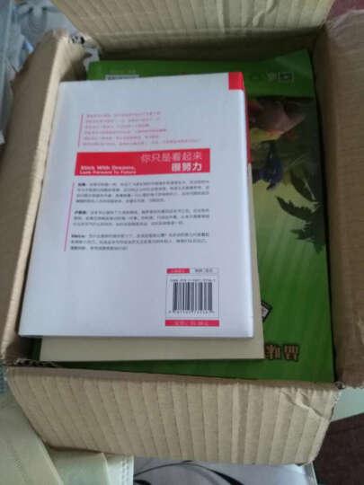 意林国际大奖小说励志男孩系列:篮球少年 晒单图