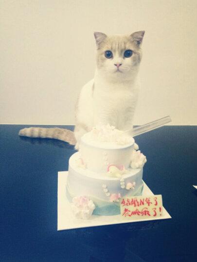 比瑞吉猫粮 天然粮 泌尿道调理成猫粮2kg 晒单图