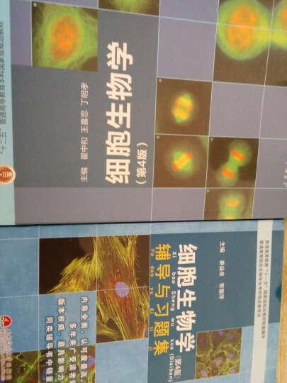 正版 高教社细胞生物学翟中和第四版第4版 教材+辅导与习题集共2本考研 奥林匹克竞赛 晒单图