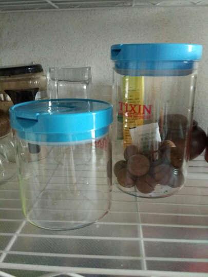 TIXIN/梯信 玻璃密封罐 茶叶食品保鲜防潮罐 咖啡豆干货储物瓶子 小号600ml蓝色 晒单图