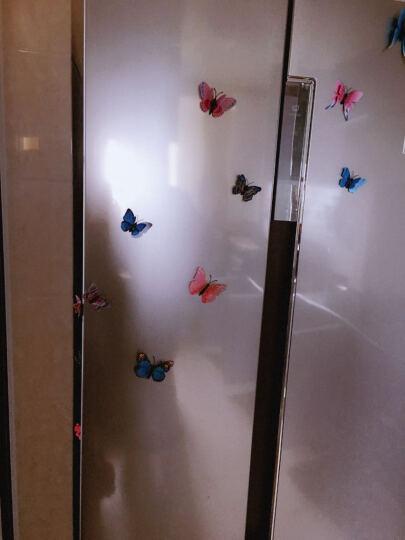 喜艾林 12只双层套装3d立体墙贴套装仿真昆虫磁性冰箱贴窗帘家装装饰品别针蝴蝶贴纸 12只蓝色双层磁铁款 晒单图