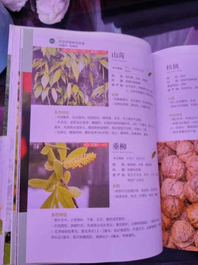 野菜野果野花图鉴 晒单图