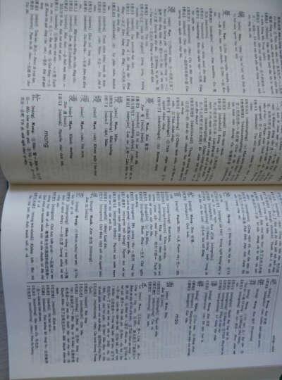 汉越词典 晒单图