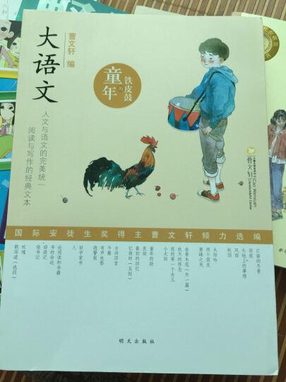 大语文 童年的铁皮鼓 2016暑假读一本好书 推荐图书 明天出版社 晒单图