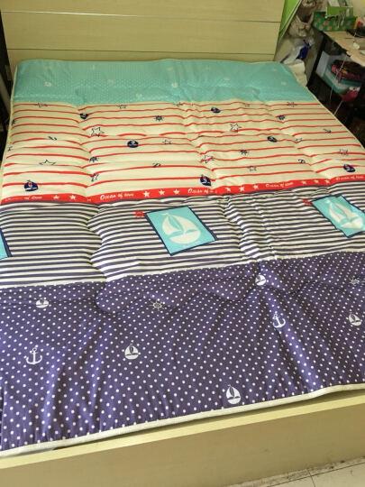 九洲鹿 法兰绒加厚床垫床褥子可折叠榻榻米学生床垫子单人双人床垫被 (法莱绒)薰衣草 180X200cm 晒单图