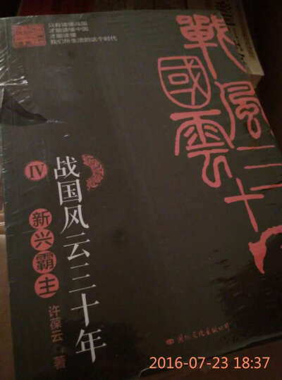 战国风云三十年4:新兴霸主 晒单图