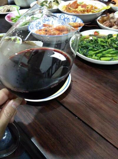 伟利士澳洲原瓶原装进口红酒 半干红葡萄酒 Vilishi黑玉jet 西拉 歌海娜 整箱六支装 晒单图