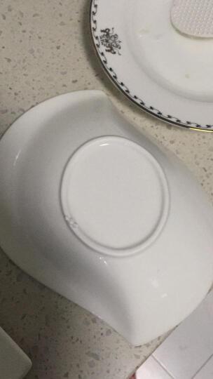 同光陶瓷餐具碗创意浮雕海螺碗家用盛汤汤锅拉面碗沙拉碗日式异型瓷碗 8寸海螺碗长20高4.5cm. 晒单图
